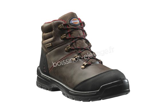 Boots de sécurité Cameron - marron