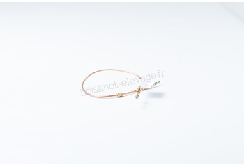 Thermocouple 829 A 562