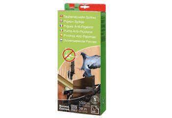 Piques Anti Pigeon 100 cm