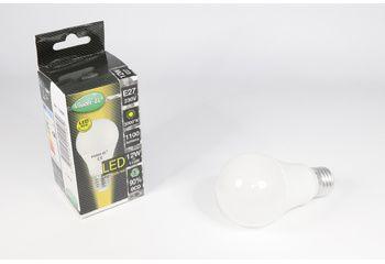 Ampoule LED E27 dépolie 12w non gradable - 3000K - 73886